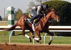Land Over Sea Works Out at Keeneland 2016
