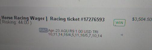 Winning Trifecta Ticket at Aqueduct
